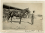 Thumb two jims   egypt   1915.