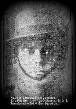 Profile pic brooks  sydney 3648