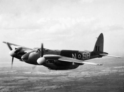 Normal 464 mosquito
