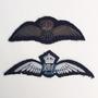 Thumb pilot wings