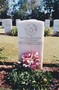 Thumb lac fred palmer cwgc headstone