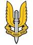 Thumb sas logo