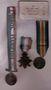 Thumb gwb medals
