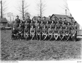 Profile pic  group portrait of the officers and ncos of the 4th field ambulance