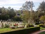 Thumb lutwyche cemetry 7
