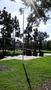 Thumb vc park 1