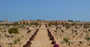 Thumb el alamein war cemetery cwgc