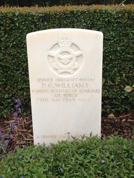 Profile pic williams 95622