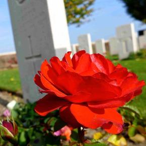 Profile pic spoilbank cemetery  ieper  c megan spencer 2017