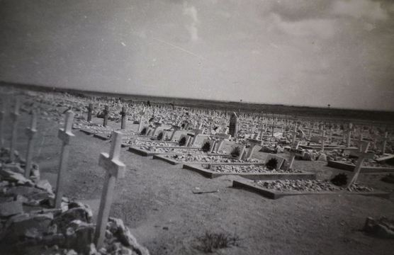 Normal el alamein cemetery egypt ww2