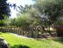 Thumb pinaroo gardens war memorial albany creek qld 35685101785 o