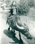 Thumb buffalo girl borneo ww2