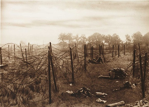 Normal the gaps in the wire near anvil wood through which the 53rd battn. rushed the machine gun posts on aug 31st 1918 were death traps  3007145787