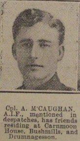 Profile pic mccaughan  alexander 177