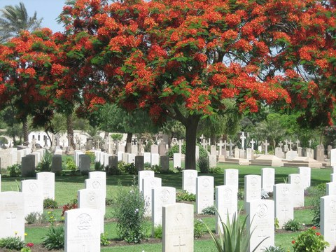 Normal cairo war memorial cemetery