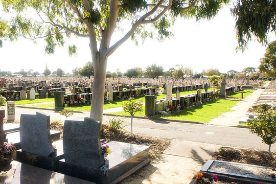 Normal inside cemetery   steve larkins