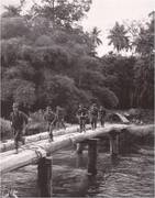 Medium malaya bridge crossing