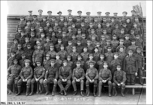 Normal 43rd battalion