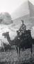 Thumb zoom adama ja on camel