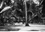 Thumb 1942 02 23  oesapa besar  timor  pow camp