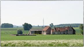 Profile pic beth farm1