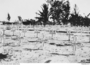 Thumb labuan war cemetery   original crosses   july 1945
