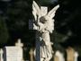 Thumb cornelian bay cemetery   hobart   tasmania   angel