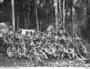 Thumb 214 infantry