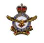 Thumb airforce logo2