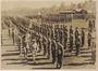 Thumb atherton tablelands  2 3  2 5  2 6 commando squadrons