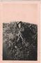 Thumb bev davidson  palm beach  sydney 1944