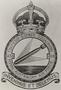 Thumb richards jack   409851   458 official unit badge   may 1943