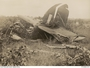 Thumb 32 squadron raaf beaufort wreckage qld apr 1944 awm p10364.010