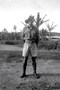 Thumb seessle 1941 rabaul