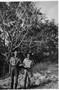Thumb herb laslett  left    andy  darwin 1942 001
