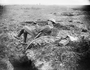 Thumb bean cpt war correspondent charles edwin wodrow   26 2 1917 near martinpuich france  e00246