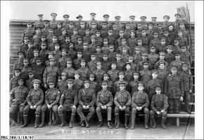 Profile pic zoom 43rd battalion