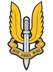 Big thumb sas logo