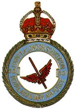Big thumb no 601 squadron raf